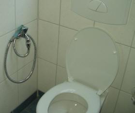 urin urinieren